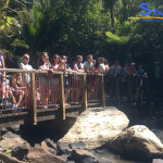 Surf-Weekend-Student-Trips-New-Zealand-4