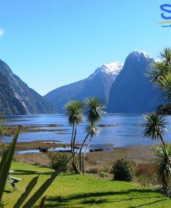 South Island Trip